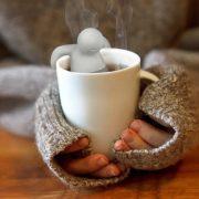 mr tea tea Filters3